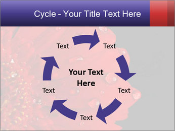 0000084488 PowerPoint Templates - Slide 62