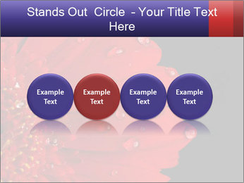 0000084488 PowerPoint Templates - Slide 76