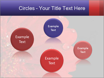 0000084488 PowerPoint Templates - Slide 77