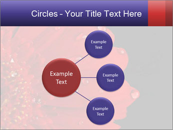 0000084488 PowerPoint Templates - Slide 79