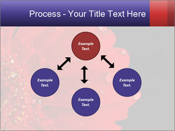 0000084488 PowerPoint Templates - Slide 91