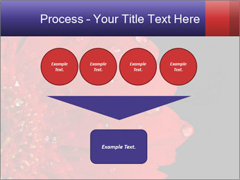 0000084488 PowerPoint Templates - Slide 93