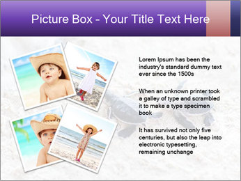 0000084489 PowerPoint Templates - Slide 23