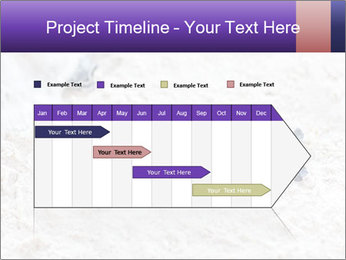 0000084489 PowerPoint Template - Slide 25