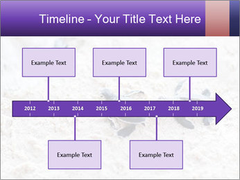 0000084489 PowerPoint Template - Slide 28