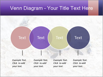 0000084489 PowerPoint Template - Slide 32