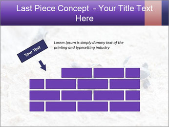 0000084489 PowerPoint Template - Slide 46