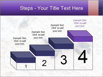 0000084489 PowerPoint Templates - Slide 64