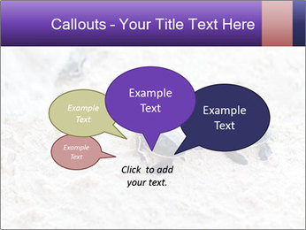0000084489 PowerPoint Template - Slide 73