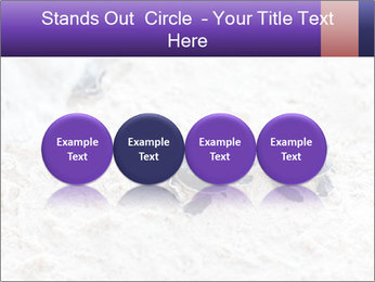 0000084489 PowerPoint Template - Slide 76