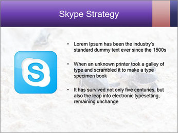 0000084489 PowerPoint Template - Slide 8
