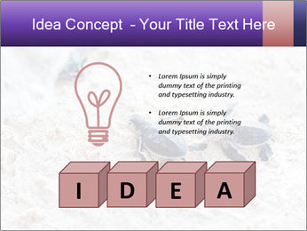 0000084489 PowerPoint Template - Slide 80
