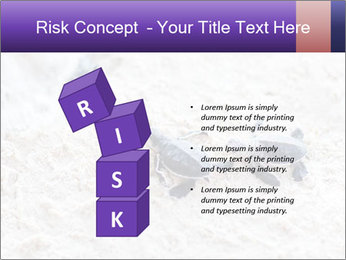 0000084489 PowerPoint Template - Slide 81