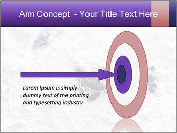 0000084489 PowerPoint Template - Slide 83