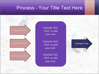 0000084489 PowerPoint Template - Slide 85