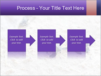 0000084489 PowerPoint Templates - Slide 88