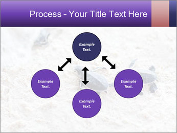 0000084489 PowerPoint Templates - Slide 91