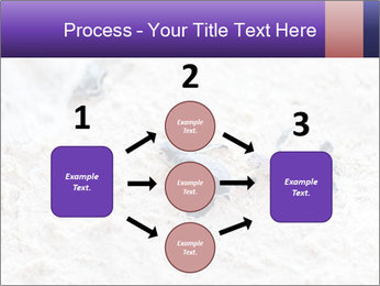 0000084489 PowerPoint Template - Slide 92