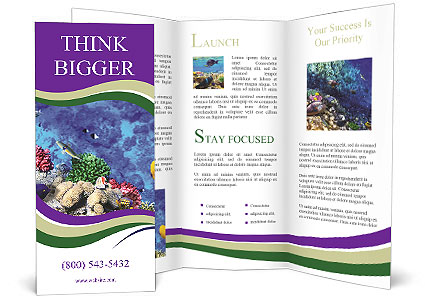 0000084493 Brochure Templates