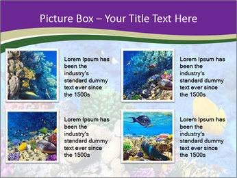 0000084493 PowerPoint Template - Slide 14