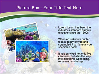0000084493 PowerPoint Template - Slide 20
