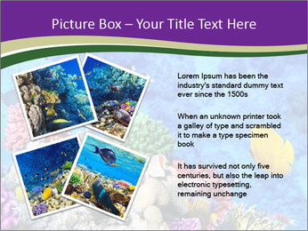 0000084493 PowerPoint Template - Slide 23