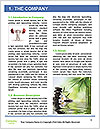 0000084502 Word Template - Page 3
