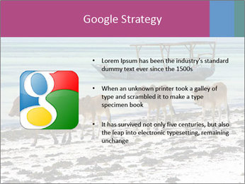 0000084505 PowerPoint Template - Slide 10