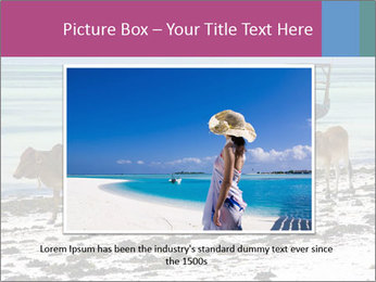 0000084505 PowerPoint Template - Slide 15