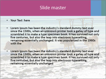 0000084505 PowerPoint Template - Slide 2