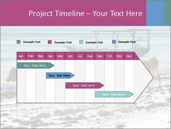 0000084505 PowerPoint Template - Slide 25