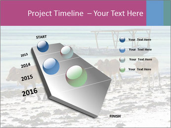0000084505 PowerPoint Template - Slide 26