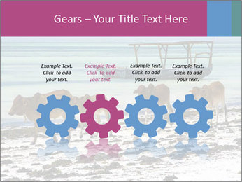 0000084505 PowerPoint Templates - Slide 48