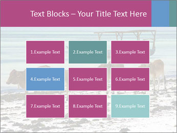 0000084505 PowerPoint Templates - Slide 68