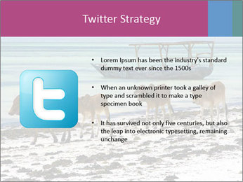 0000084505 PowerPoint Template - Slide 9