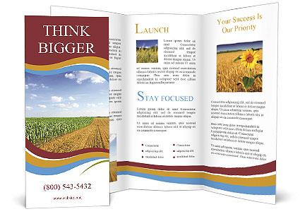 0000084516 Brochure Template