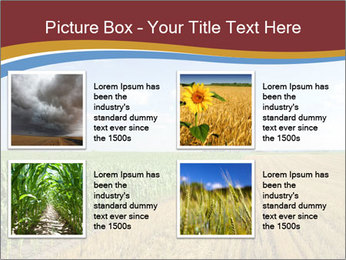0000084516 PowerPoint Templates - Slide 14