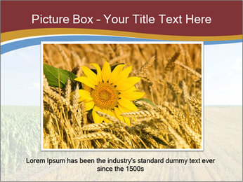 0000084516 PowerPoint Templates - Slide 15