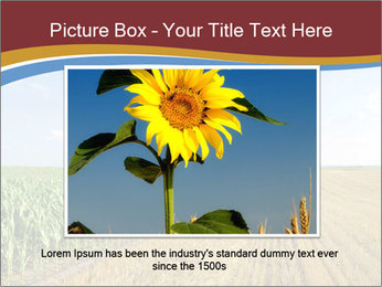 0000084516 PowerPoint Templates - Slide 16