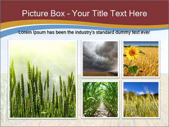 0000084516 PowerPoint Templates - Slide 19
