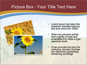 0000084516 PowerPoint Templates - Slide 20
