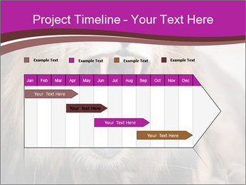 0000084531 PowerPoint Templates - Slide 25
