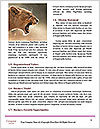0000084531 Word Templates - Page 4