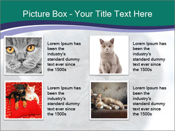 0000084532 PowerPoint Template - Slide 14