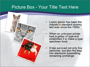 0000084532 PowerPoint Templates - Slide 17