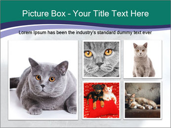 0000084532 PowerPoint Template - Slide 19