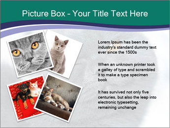 0000084532 PowerPoint Templates - Slide 23