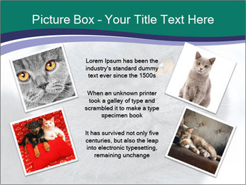 0000084532 PowerPoint Templates - Slide 24