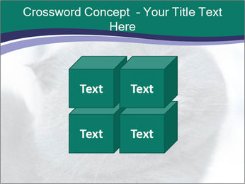 0000084532 PowerPoint Template - Slide 39