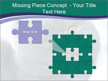 0000084532 PowerPoint Template - Slide 45